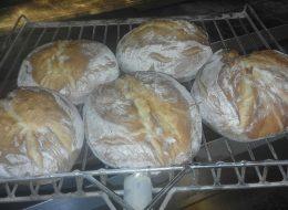 Panificio artigianale con rivendita pane ed alimentari